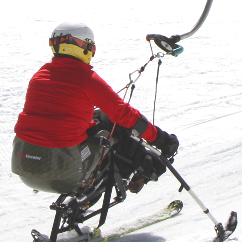 Tessier universal skilift harness system
